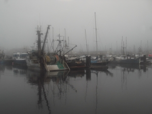 A Foggy Morning For A Cruise