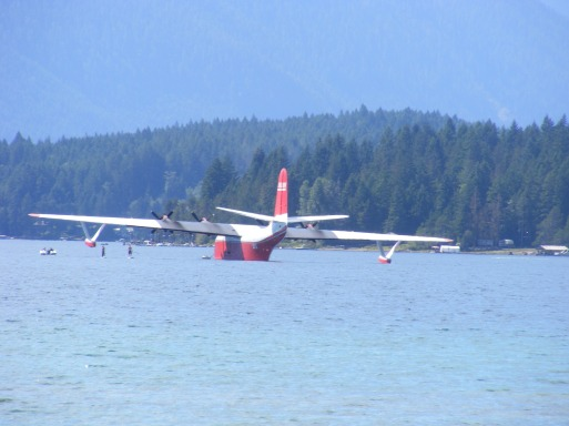 The Martin Mars Water Bomber, known all over the world for it's great use in putting out fires! It lives here in Port Alberni on Spraut Lake!